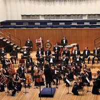 Камерный оркестр Республики Беларусь