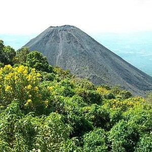View of the Izalco Volcano