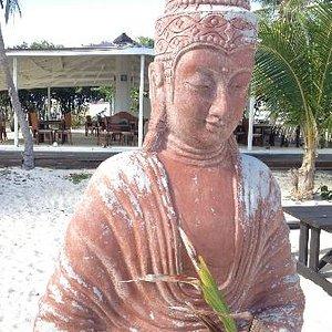 Buddha Guarding Tahoma Shala