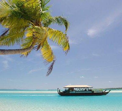 Titi ai Tonga - The Vaka Cruise