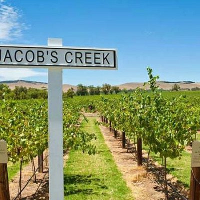 Visit the Jacob's Creek Visitor's Centre in the South Australian wine heartland of Barossa