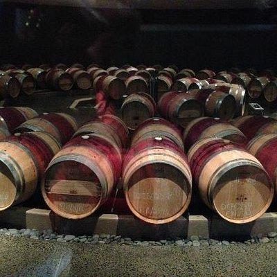 the barrels