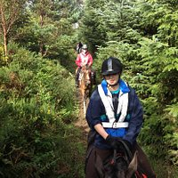 Guided trail rides through the Dublin Mountains