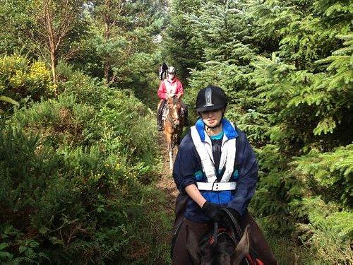 Guided trail rides through the Dublin Mountains