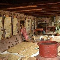 Présentation des produits travaillés à l'habitation