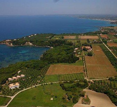 Μercouri Estate: Bird's eye view from S to N